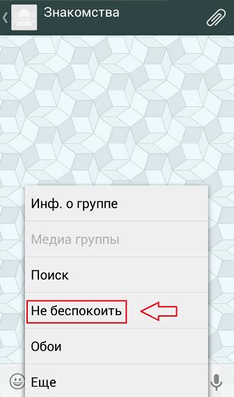 """Меню """"Не беспокоить"""" в приложении WhatsApp"""