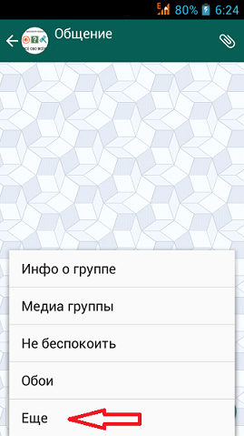 Меню чата WhatsApp